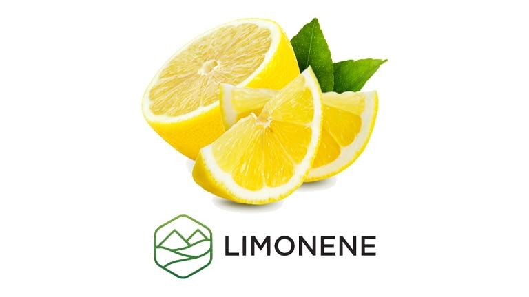 Limonene Terpene