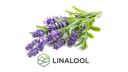 Linalool 1